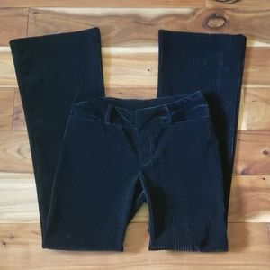 Black velvet dress pants